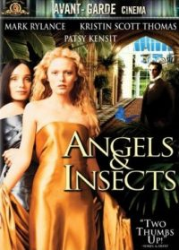 Ángeles e insectos (Angels and insects)