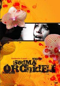 Siete orquídeas manchadas de rojo